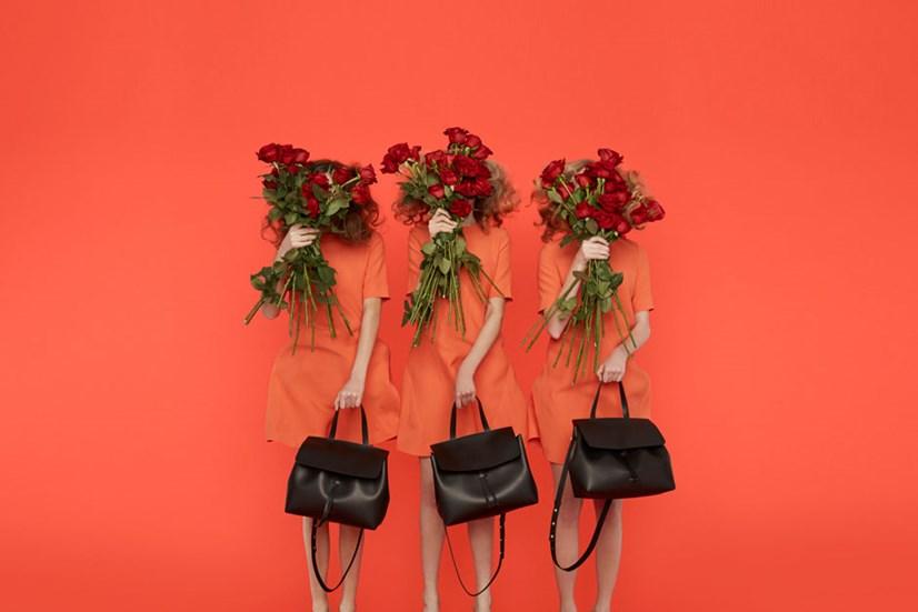mansur-gavriel-lady -bag